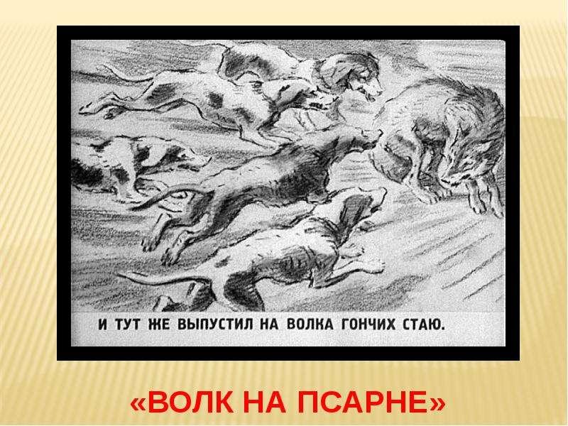 тень картинки волк на псарне распечатать великолепные всех отношениях
