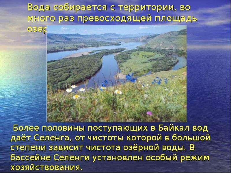 Вода собирается с территории, во много раз превосходящей площадь озера. Более половины поступающих в