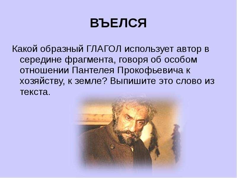 ВЪЕЛСЯ Какой образный ГЛАГОЛ использует автор в середине фрагмента, говоря об особом отношении Панте