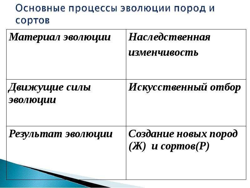 Учение Ч. Дарвина об искусственном отборе, рис. 20