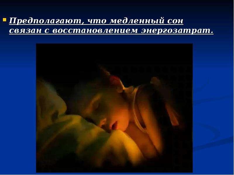 Предполагают, что медленный сон связан с восстановлением энергозатрат. Предполагают, что медленный с