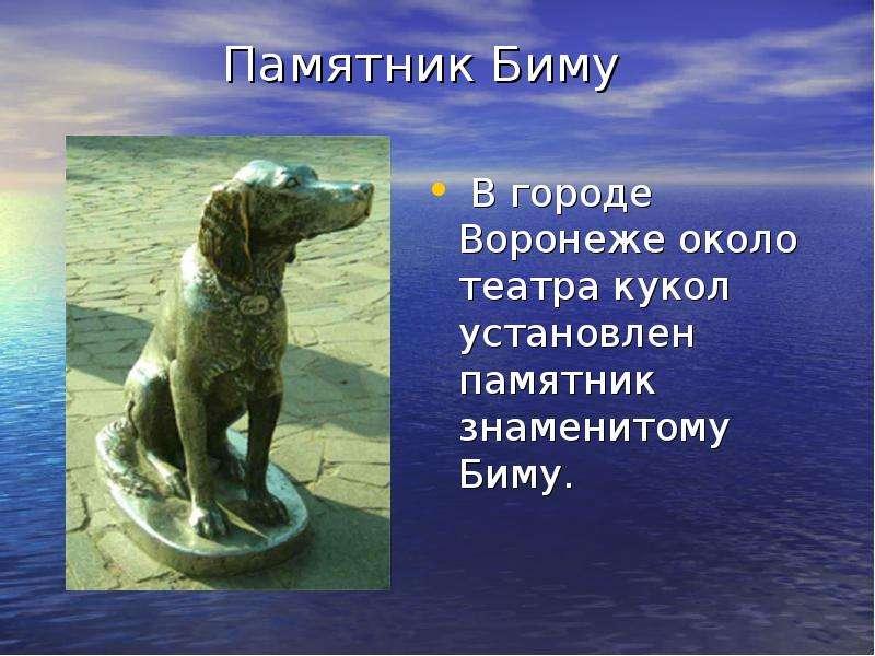 Памятник Биму В городе Воронеже около театра кукол установлен памятник знаменитому Биму.