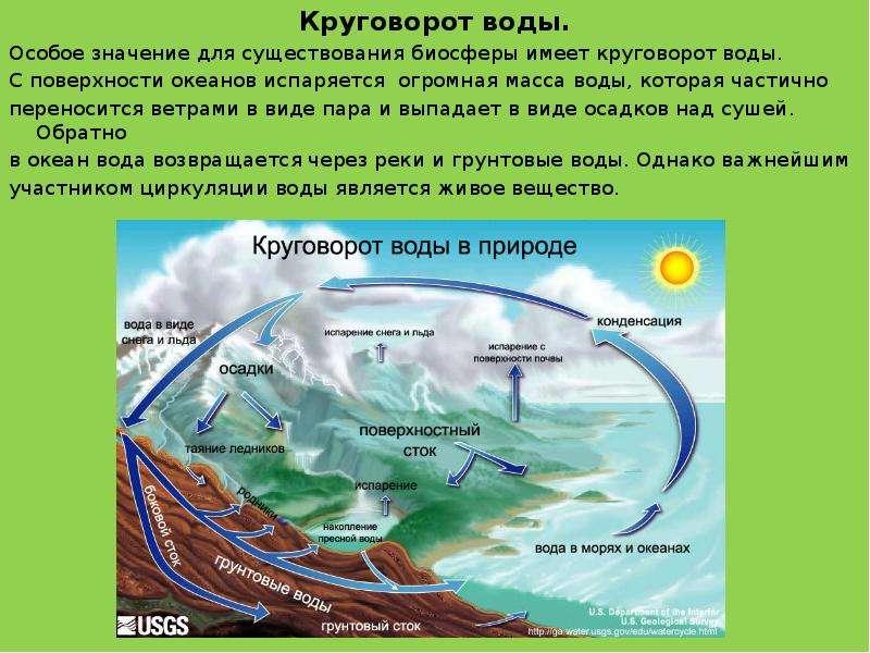 Круговорот воды. Круговорот воды. Особое значение для существования биосферы имеет круговорот воды.
