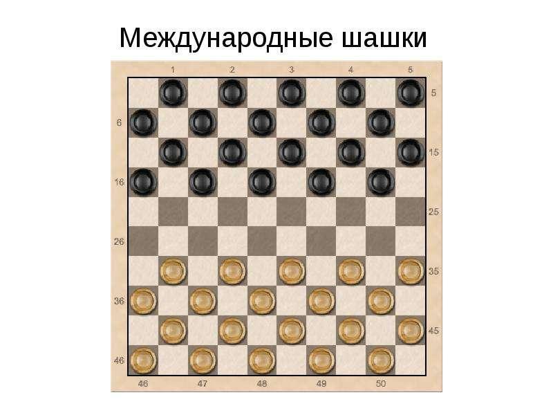 Доклад на тему шашки 9639