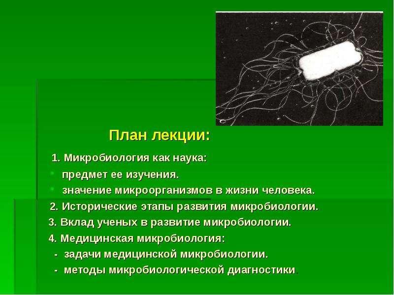 План лекции: План лекции: 1. Микробиология как наука: предмет ее изучения. значение микроорганизмов