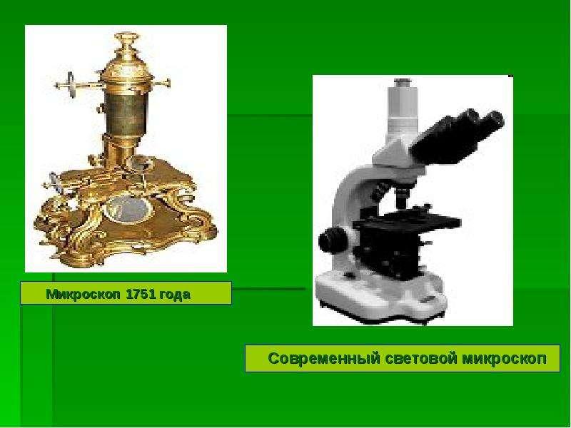 Микроскоп 1751 года Микроскоп 1751 года