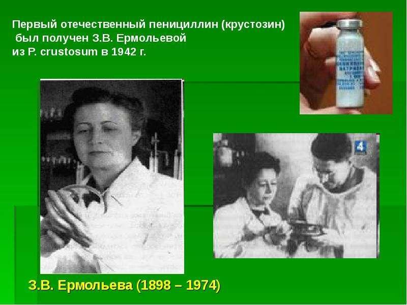 Микробиологии как наука, слайд 24