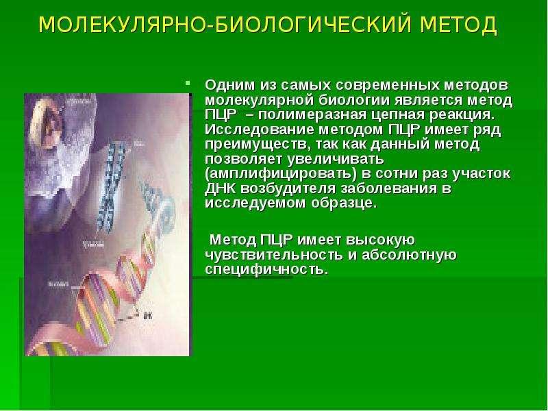 МОЛЕКУЛЯРНО-БИОЛОГИЧЕСКИЙ МЕТОД Одним из самых современных методов молекулярной биологии является ме