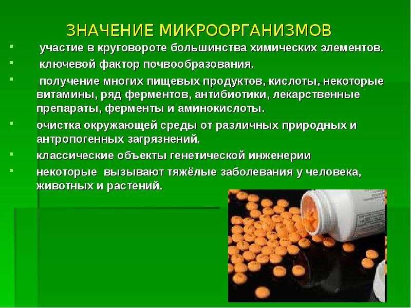 ЗНАЧЕНИЕ МИКРООРГАНИЗМОВ участие в круговороте большинства химических элементов. ключевой фактор поч