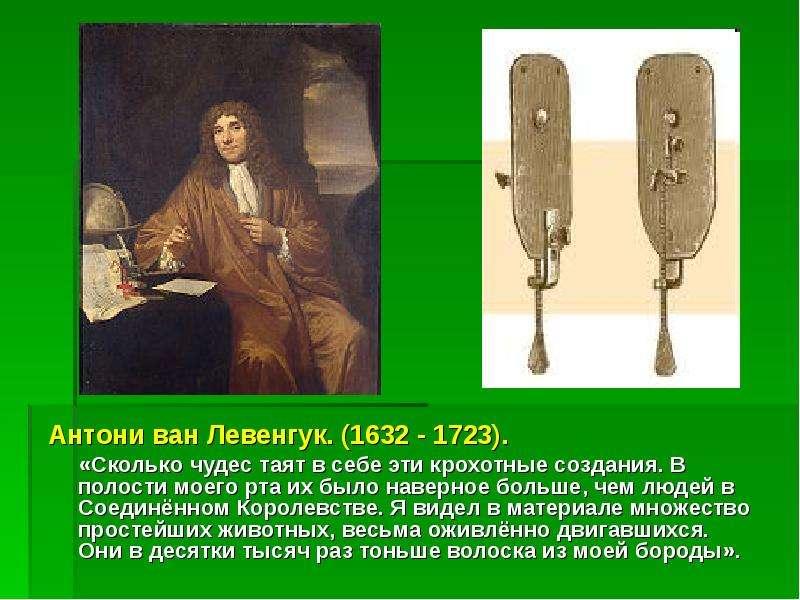 Антони ван Левенгук. (1632 - 1723). Антони ван Левенгук. (1632 - 1723). «Сколько чудес таят в себе э