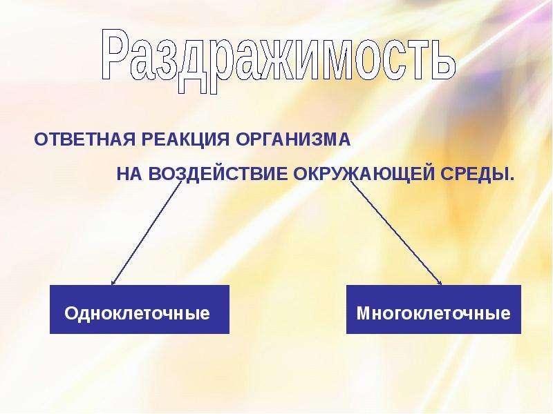 Координация и регуляция организмов, слайд 4