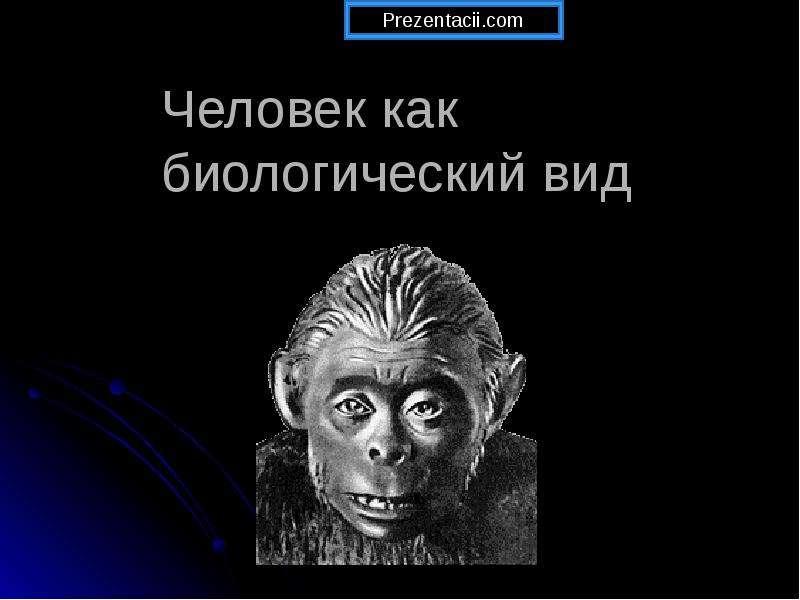 Презентация Человек как биологический вид