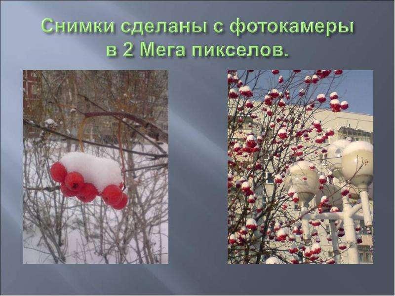 История развития фотографии, слайд 23