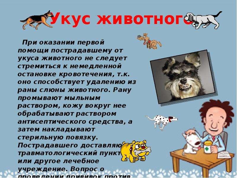 Укус животного При оказании первой помощи пострадавшему от укуса животного не следует стремиться к н