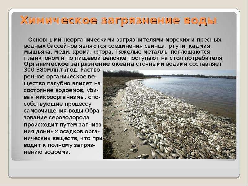 Химическое загрязнение воды Основными неорганическими загрязнителями морских и пресных водных бассей