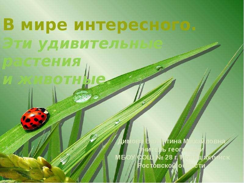 Презентация Эти удивительные растения и животные