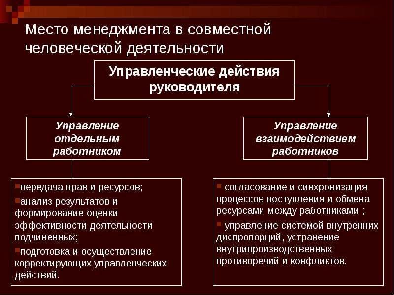 Место менеджмента в совместной человеческой деятельности Управленческие действия руководителя