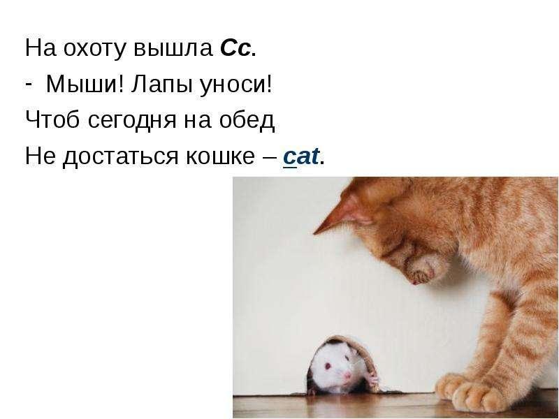 На охоту вышла Сс. Мыши! Лапы уноси! Чтоб сегодня на обед Не достаться кошке – cat.