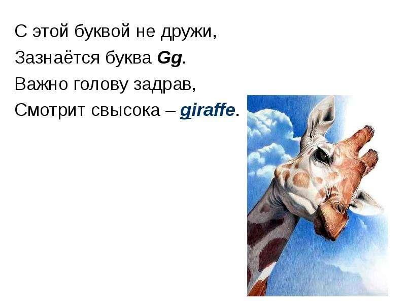 С этой буквой не дружи, Зазнаётся буква Gg. Важно голову задрав, Смотрит свысока – giraffe.