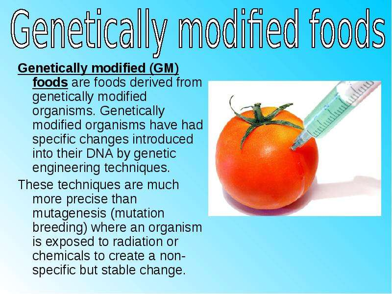 genetical modified foods Genetically modified food, crops and gmo issues read current science articles on genetic engineering including mice with glowing hearts, disease-resistant mosquitos, gm bacteria chips and more.