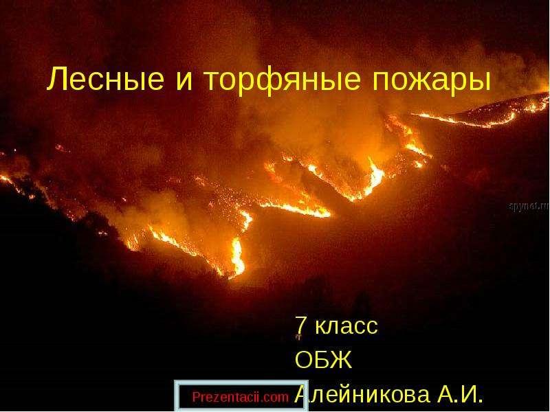 Доклад лесные и торфяные пожары 6195