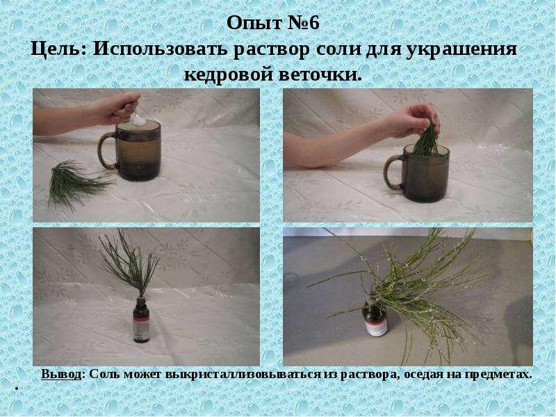 Как сделать ветки с солью