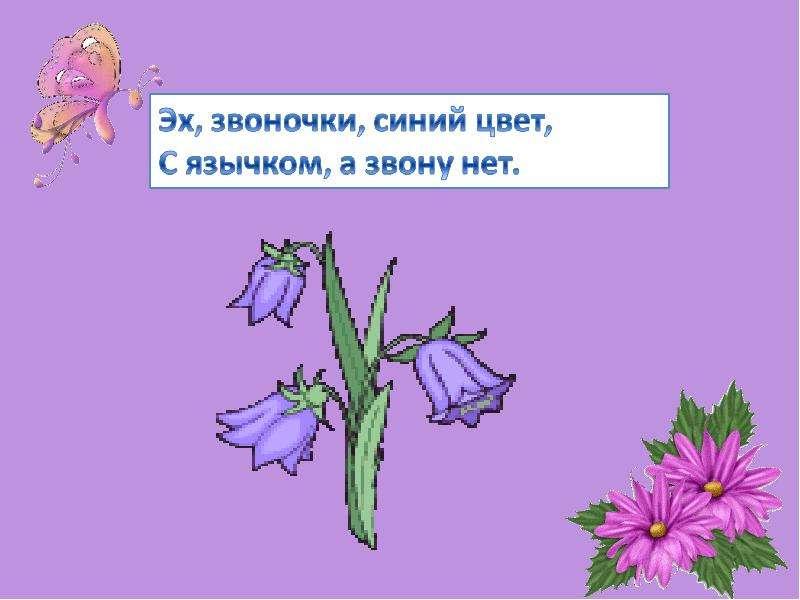 мужьям загадка где картинка с цветами одной сделать