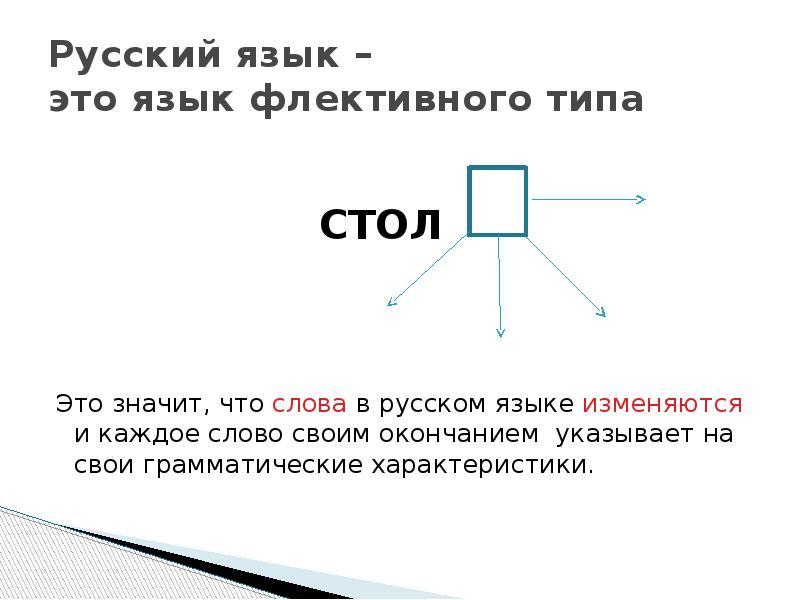 Русский язык – это язык флективного типа СТОЛ Это значит, что слова в русском языке изменяются и каж