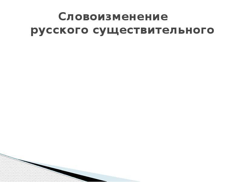 Словоизменение русского существительного
