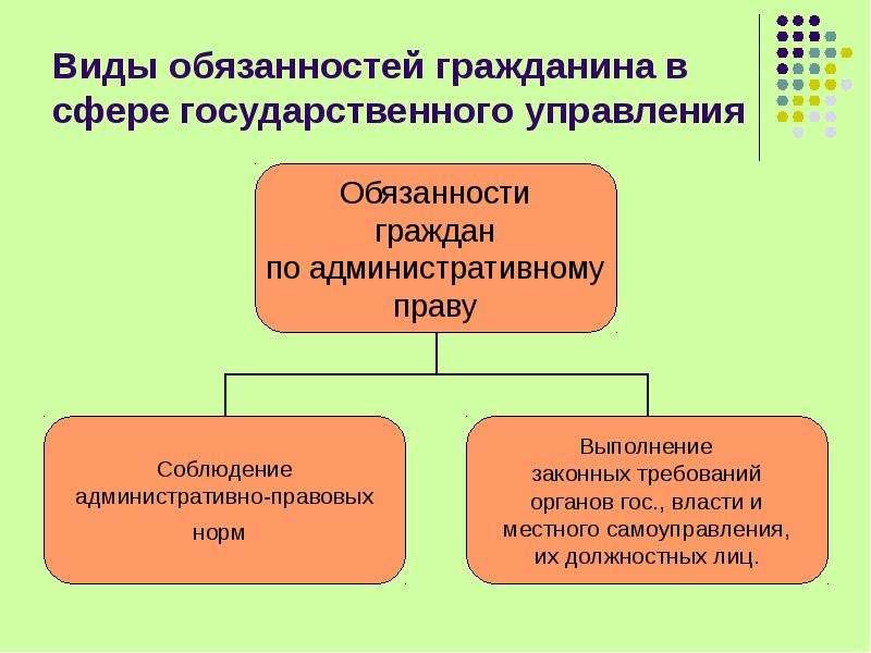 Виды обязанностей гражданина в сфере государственного управления