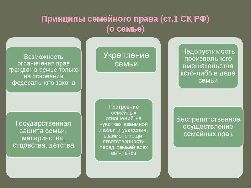 Принципы семейного права (ст. 1 СК РФ) (о семье)