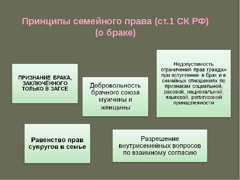 Принципы семейного права (ст. 1 СК РФ) (о браке)