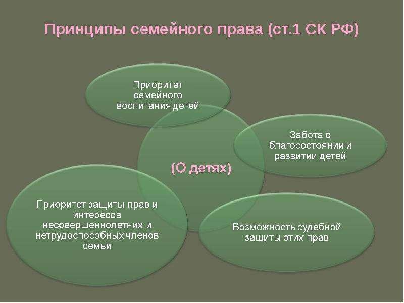 Принципы семейного права (ст. 1 СК РФ)