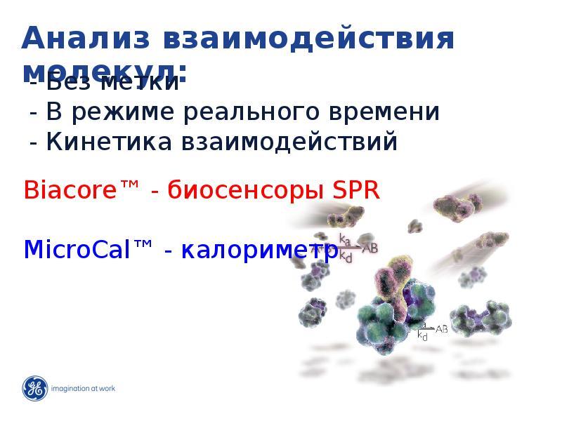 Анализ взаимодействия молекул: