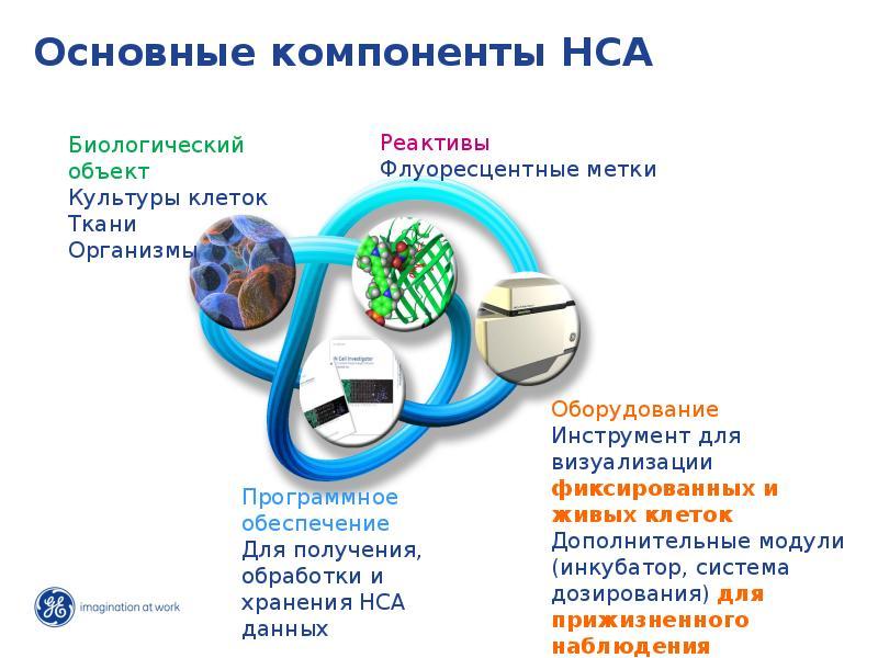 Основные компоненты HCA