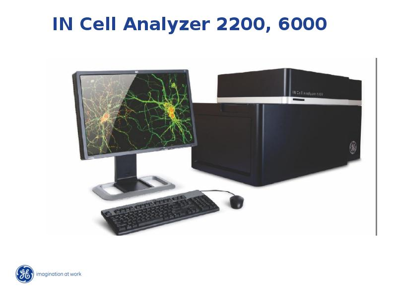 IN Cell Analyzer 2200, 6000