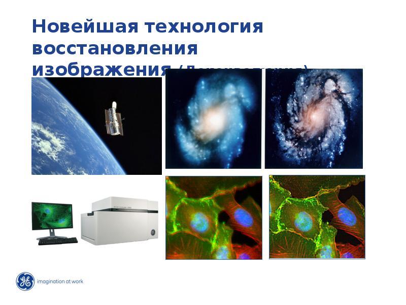 Развитие исследований: от гена до функции, слайд 27