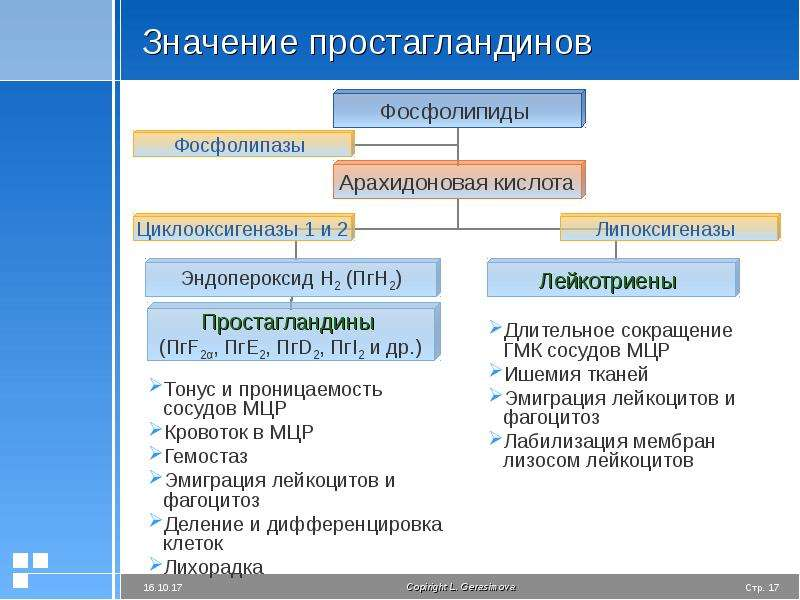 Значение простагландинов