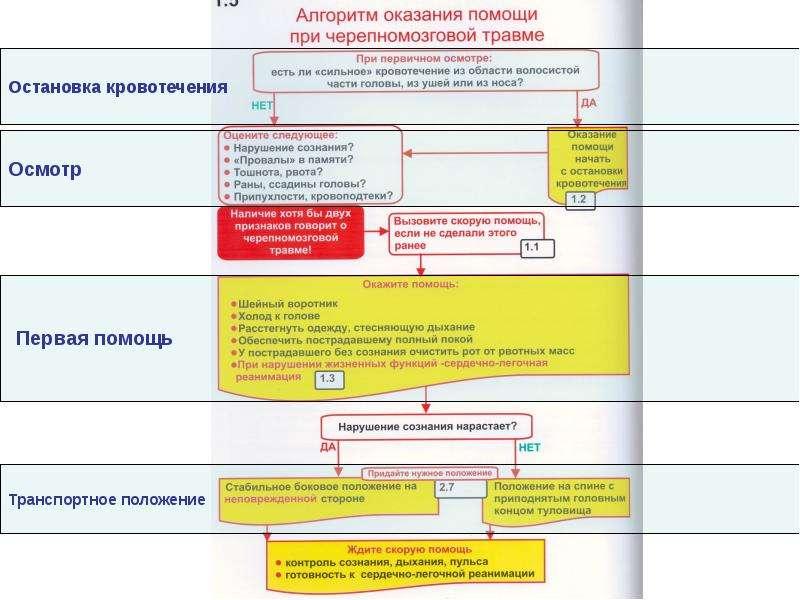 ПЕРВАЯ ПОМОЩЬ ПРИ ТРАВМЕ ГОЛОВЫ, слайд 32