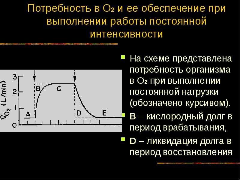 Потребность в О2 и ее обеспечение при выполнении работы постоянной интенсивности На схеме представле