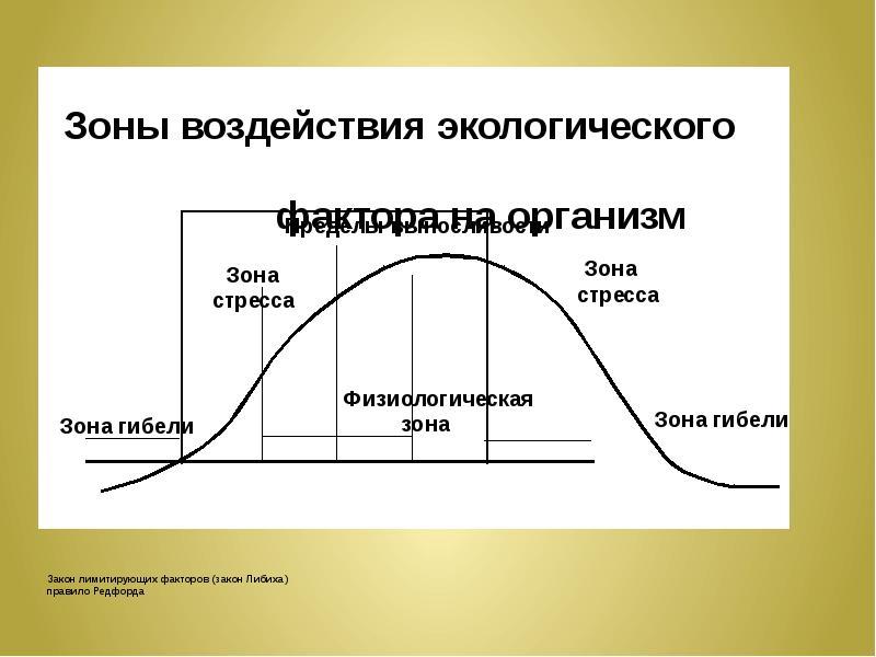 Закон лимитирующих факторов (закон Либиха) правило Редфорда