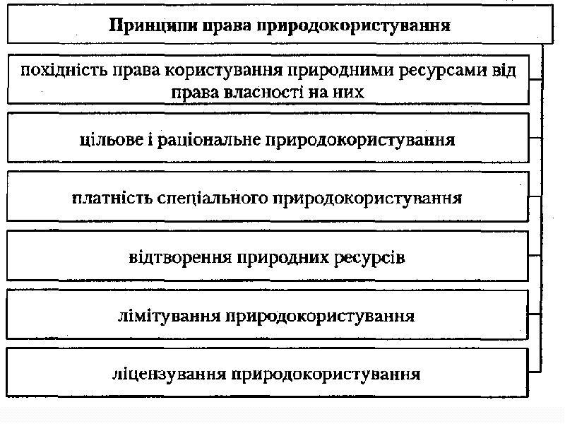 Поняття права природокористування, слайд 12