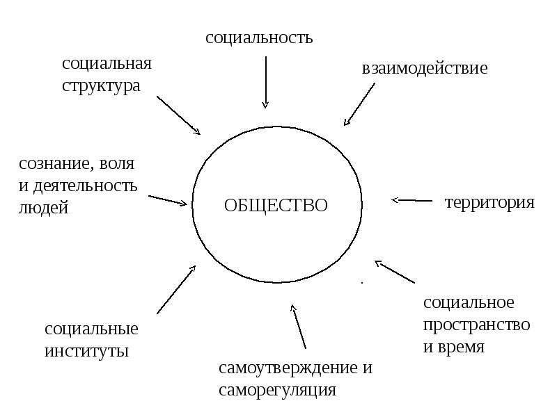 Общество и его структура реферат 6955