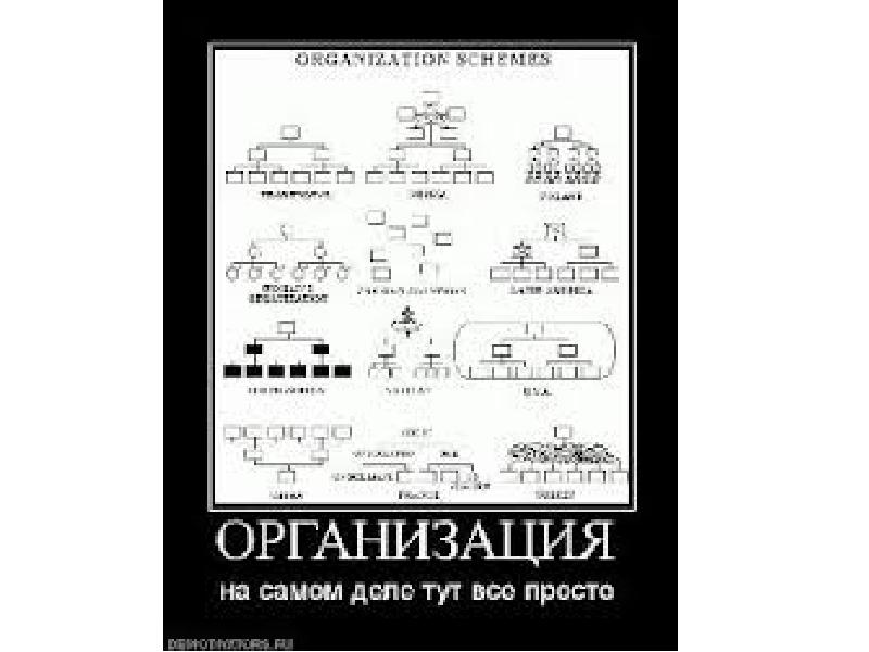 Функция организации, рис. 50