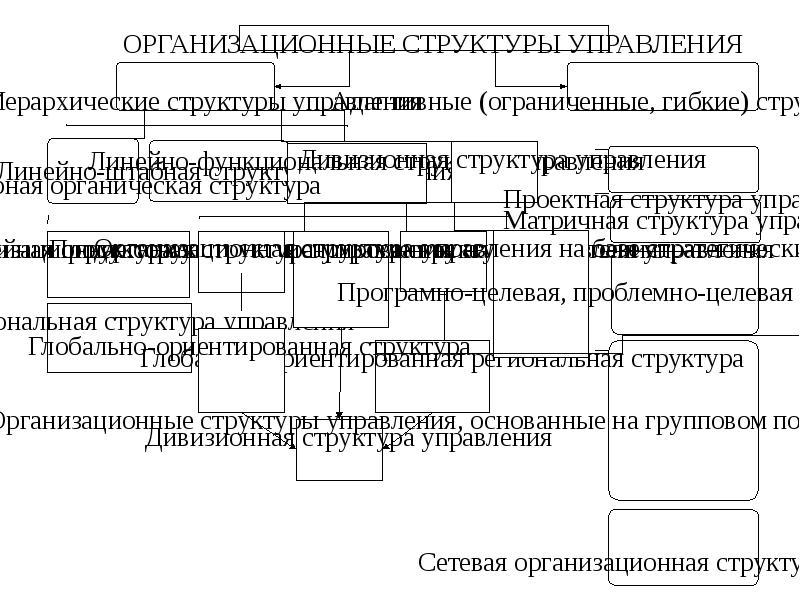 Функция организации, рис. 51