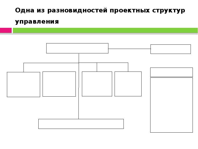 Одна из разновидностей проектных структур управления