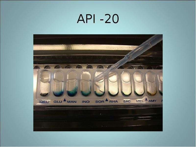 API -20