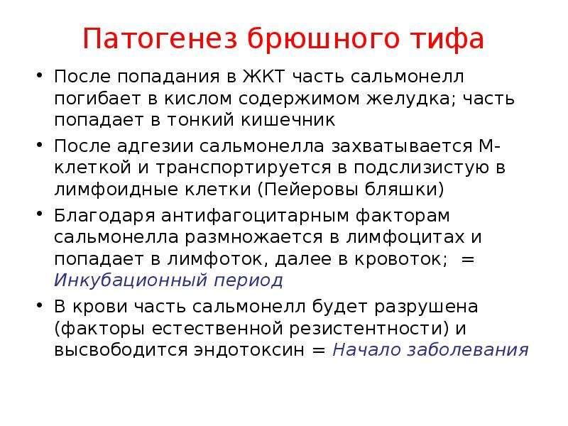 Патогенез брюшного тифа После попадания в ЖКТ часть сальмонелл погибает в кислом содержимом желудка;