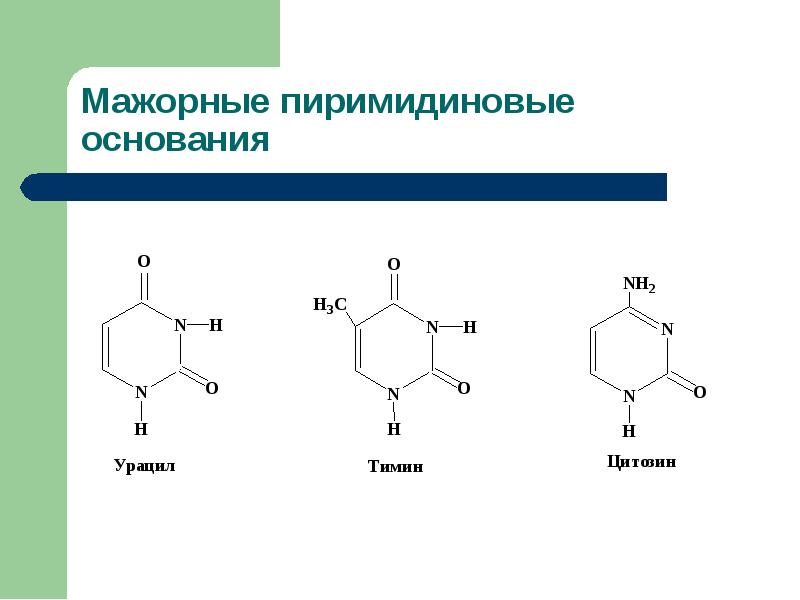 Болезни обмена пуринов и пиримидинов Витамины, участвующие в биосинтезе азотистых оснований, слайд 4