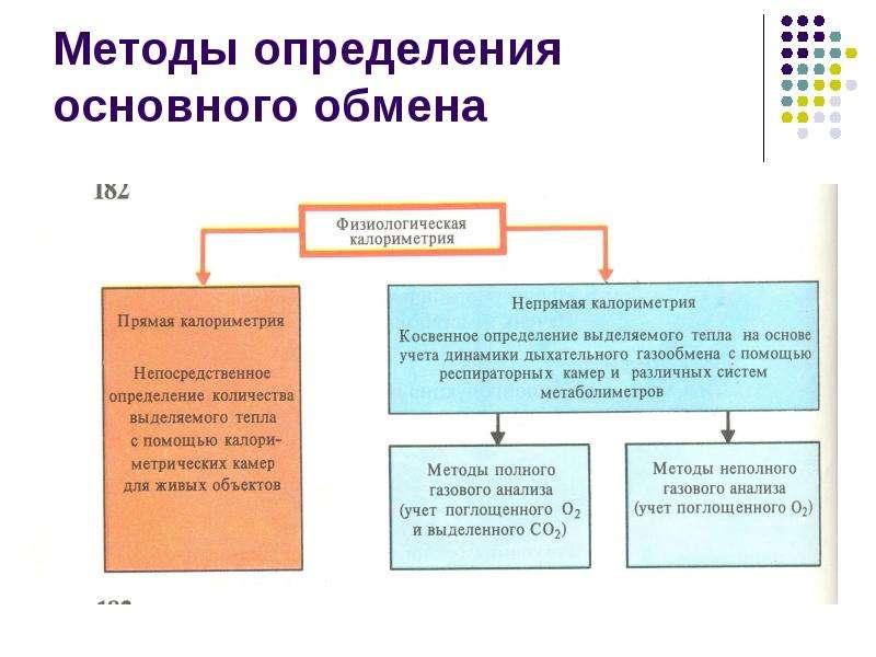 Методы определения основного обмена